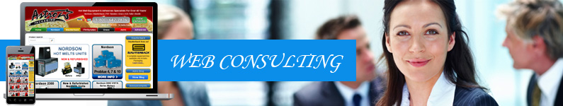 web-consulting