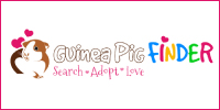 guinea-pig-finder